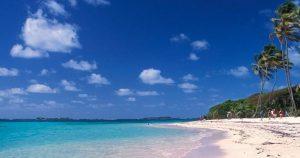 Une magnifique plage de la Martinique